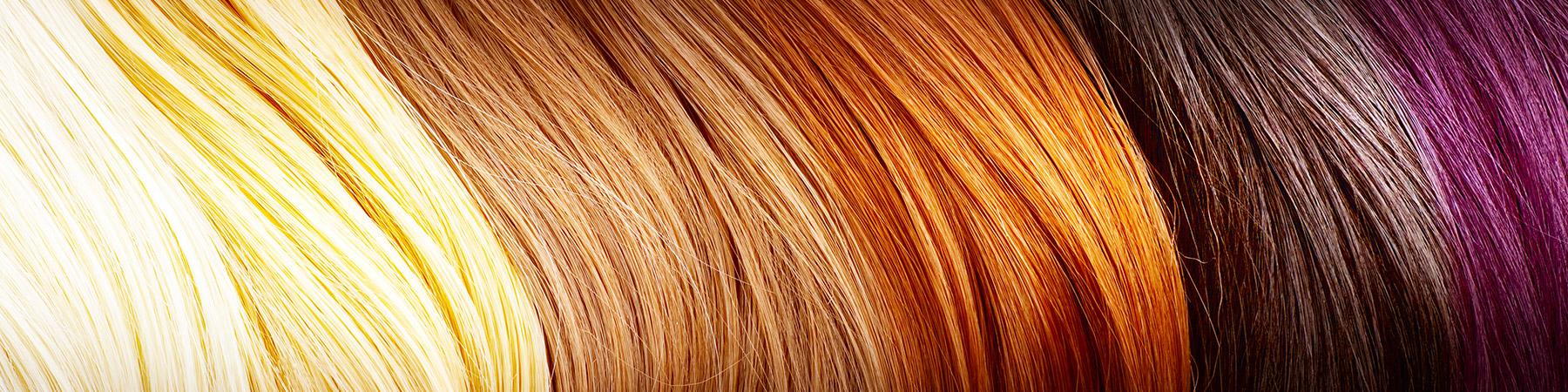 vademecum włosa racoon